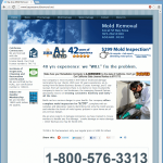 Bay Area Mold Removal