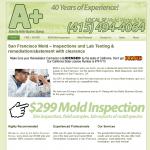 SF Mold Remediation
